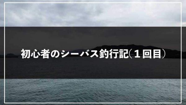 シーバス初心者が初めて釣るまでの釣行記【1回目】